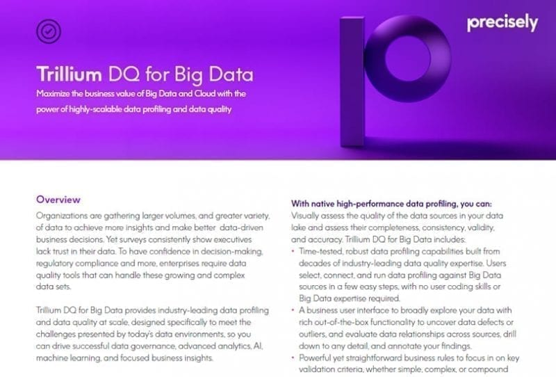 Trillium DQ for Big Data
