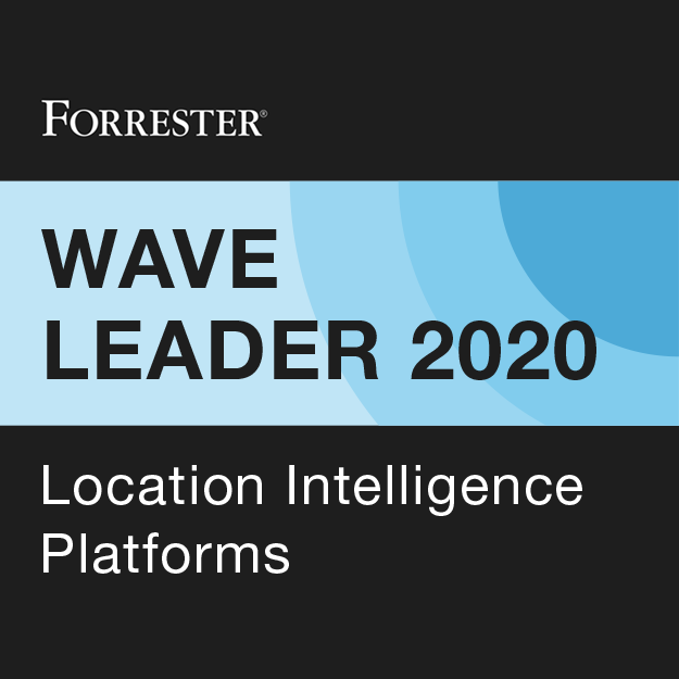 Location Intelligence Platforms
