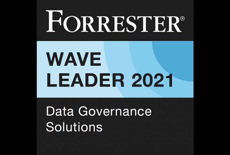 Forrester Wave Leader 2021: Data-Governance Solutions badge