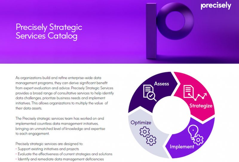 Precisely Strategic Services Catalog